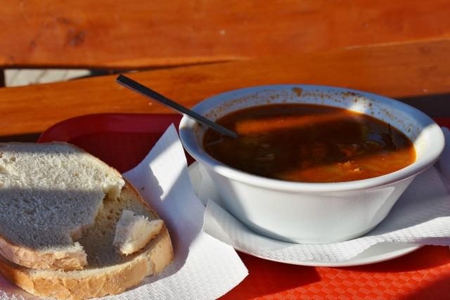 soup maker reviews