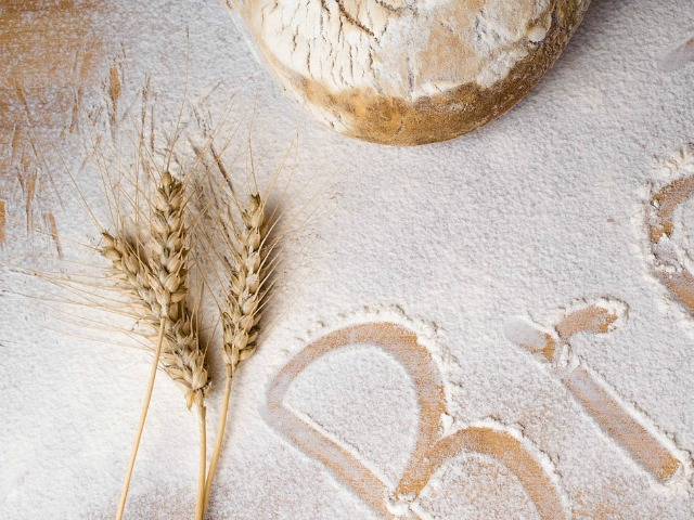 best flour for bread making