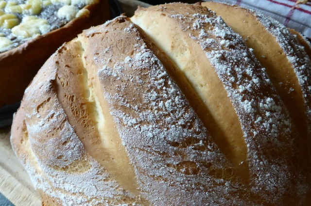bread maker vs stand mixer